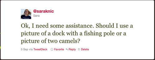 a dock or a camel