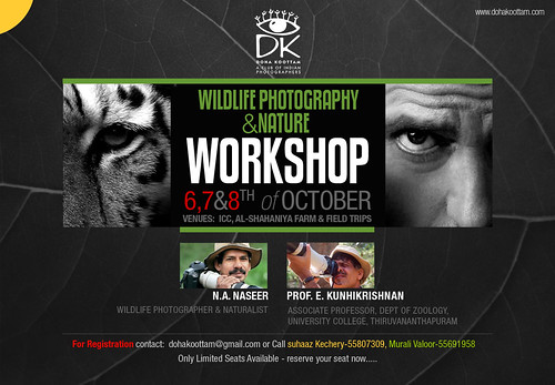 DK NATURE & WILDLIFE WORKSHOP