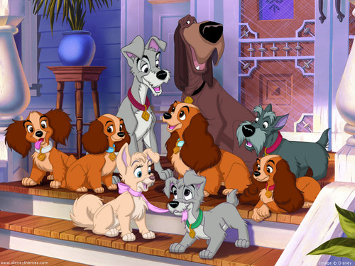 2-generations-of-Lady-and-the-Tramp-disney-13087886-1024-768