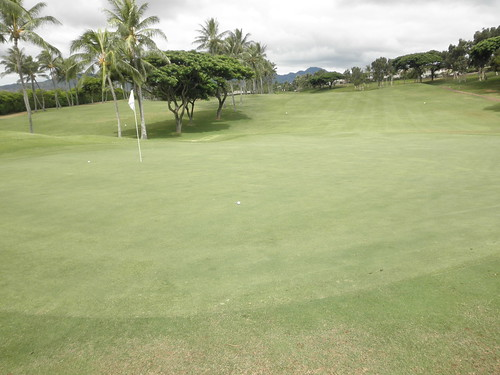 WAIKELE COUNTRY CLUB 106