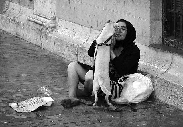 Sin casa y con perro