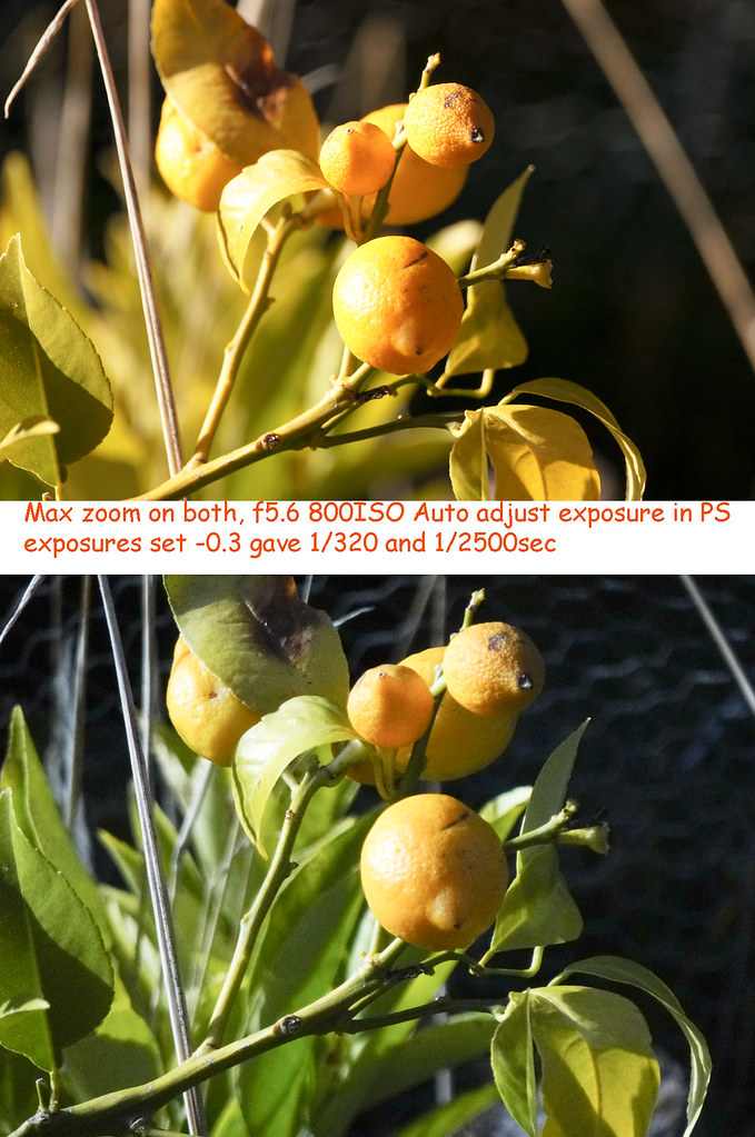 comparing-lemons
