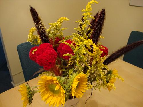 Princeton Farmer's Mkt flowers 9/15/11