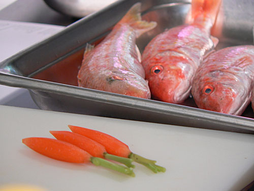 rougets et carottes.jpg
