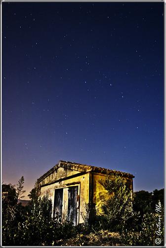 nocturna by Antoni illa