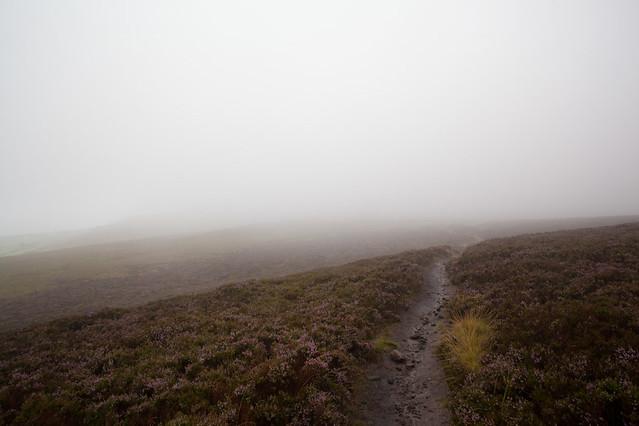 A soggy, foggy moorland track
