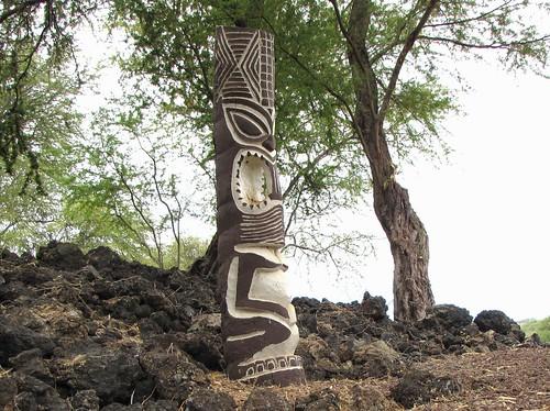 Maui Chiaki 321