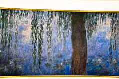 Claude Monet - Nymphéas (Water Lilies) at Musée de l'Orangerie Paris France (mbell1975) Tags: paris france art water museum painting de europe gallery museu eu musée musee m lilies monet impressionism claude museo impression impressionist muzeum orangery müze lorangerie nymphéas museumuseum