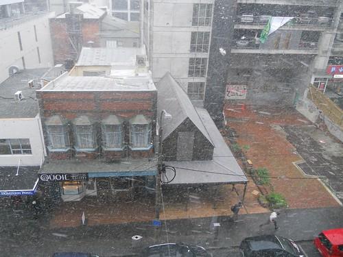 Snow in Wellington