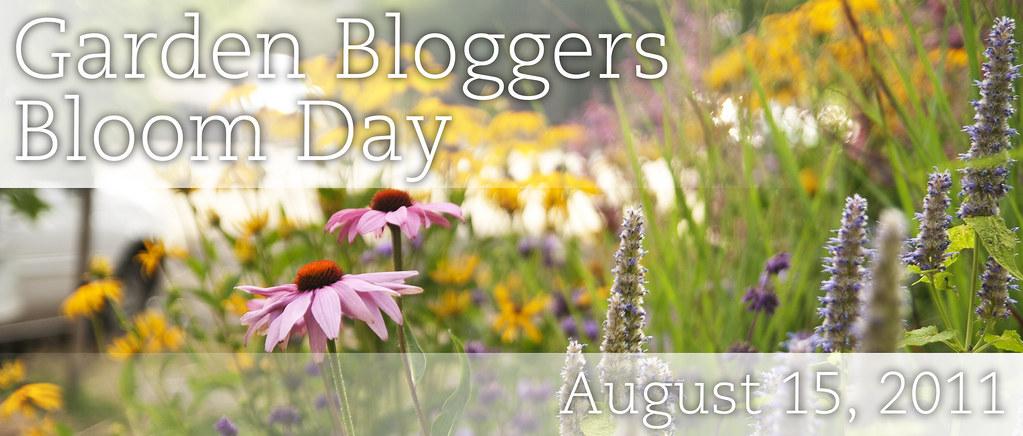 GBBD_August 2011