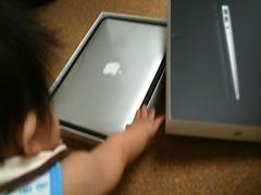 とらちゃんと MacBook Air 11