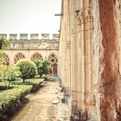 - abbaye - (FRJ photography) Tags: shadow españa tree green day peace vert ombre jour catalunya espagne arbre cataluña paix abbaye catalogne catalonha