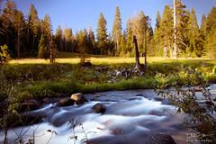 Butte Meadows (Blake.W.Smith.) Tags: creek tokina1224 chico buttemeadows canon7d