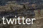 twitter banner w- wood