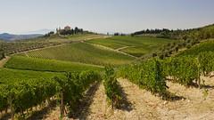 Road to Greve in chianti (Michele Ferretti) Tags: canon pisa tuscany toscana canon1740f4