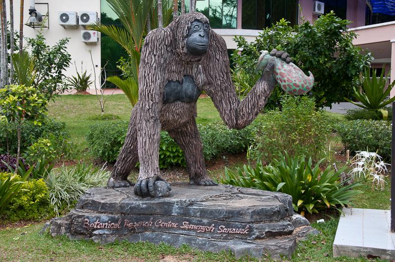 Реабилитационный центр дикой природы Семенггох на Борнео