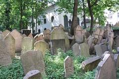 "Old Jewish Cemetery (Starý židovský hřbitov), Prague (Prag/Praha) • <a style=""font-size:0.8em;"" href=""http://www.flickr.com/photos/23564737@N07/6083174874/"" target=""_blank"">View on Flickr</a>"