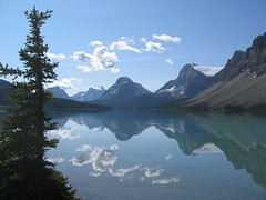 Bow Lake in the Morning (Plant Design Online) Tags: canada mountains landscape rockies scenery day clear regionwide