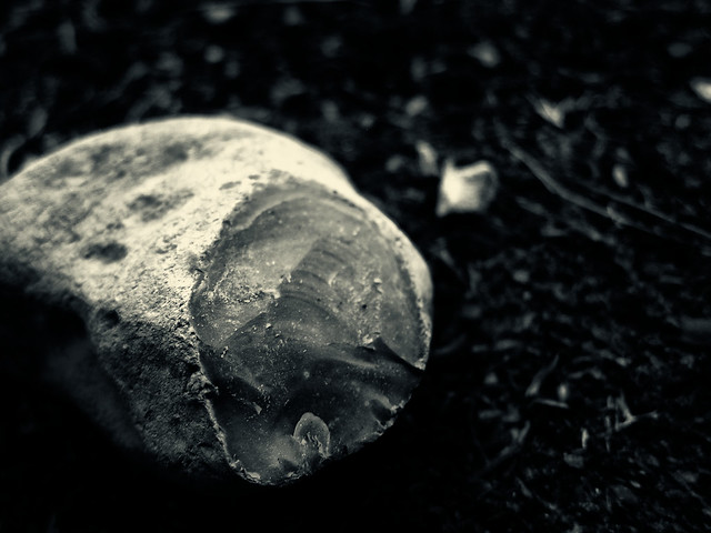 237/365: Chipped Rock