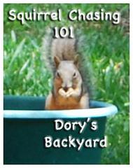 Squirrel-Chasing-101