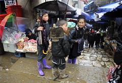 84_LAO82050107 (TC Yuen) Tags: vietnam sapa hmong terracefarming locai