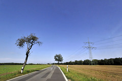 Bautzen to Boxberg Roadscape (6)
