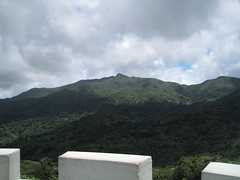 Puerto Rico (iqwblue) Tags: rain forest puerto rico jungle