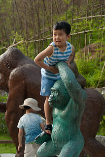 Seoul Zoo (18)