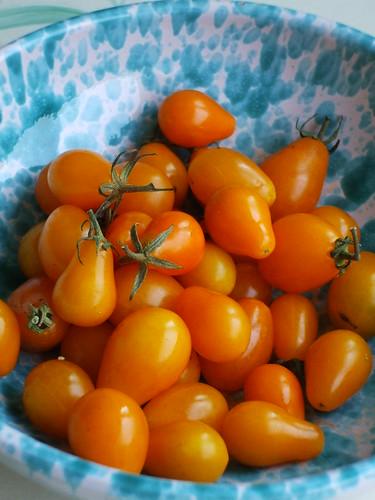 Pomodorini gialli by Satsuki010