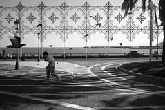 Salerno () (Bananocrate - ) Tags: street pigeon finepix fujifilm lungomare salerno x100