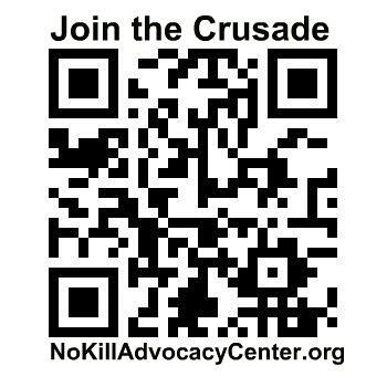 NoKillAdvocacyCenter.org by MattsLens