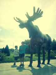 Moose Lake, Minn.