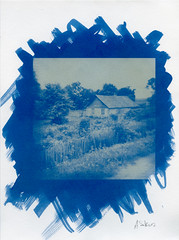 (artur sikora) Tags: film countryside poland scan blueprint cyanotype altprocess artursikora photographerdublin wwwartursikoracom alternariveprint