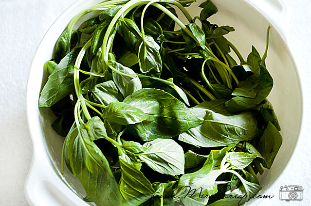 Basil Leftovers