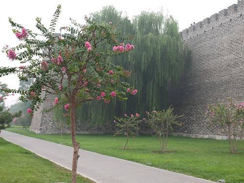 Murallas ciudad Ming (02)