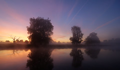Kevins Tree sunrise (jerry_lake) Tags: hdr langleypark langleycountrypark photomatix nikond90 tokina1116mm