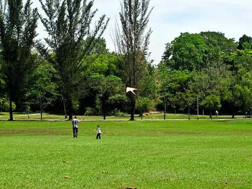 IMG_0572 Flying Kite , 放风筝,Polo Ground ,Ipoh