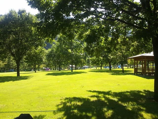 あいかわ公園の芝生広場の写真