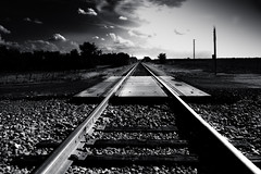Begin (mynamesdonny) Tags: railroad our light sky clouds train landscape vanishingpoint nikon texas tracks daily beginning coolpix challenge begin odc s8100 odc3