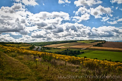 m2 from hill 2011 (stephen thomas green1) Tags: summer sky kent august bluesky me3 m2 medway hdr sunnyafternoon 2011 borstal august2011 differentlighttas