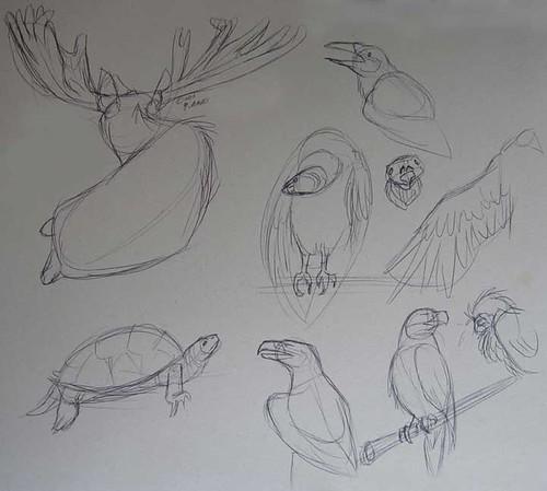8.9.11 - Maine Wildlife Park Studies