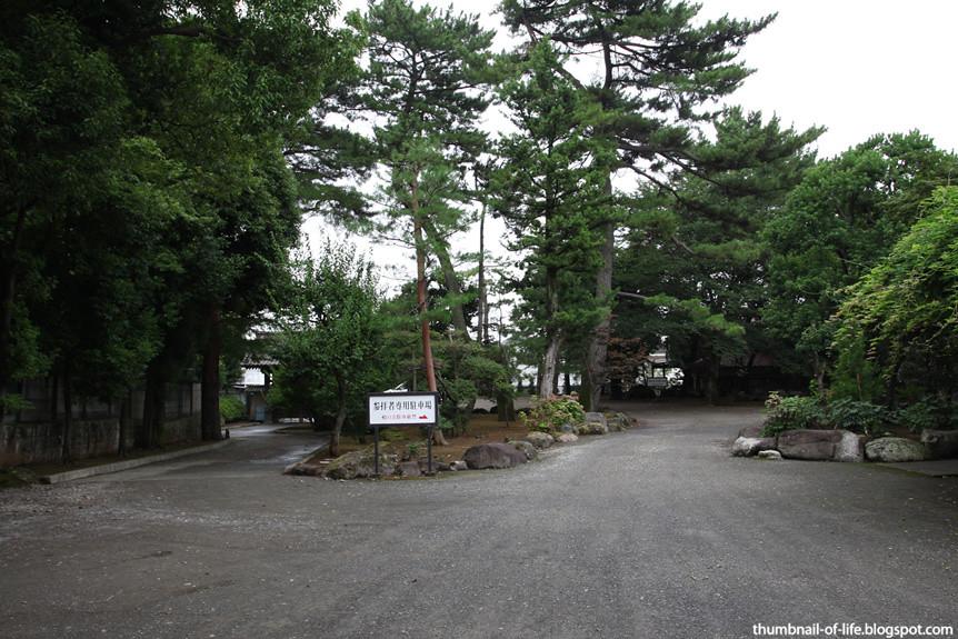 Goutokuji - Maneki Neko