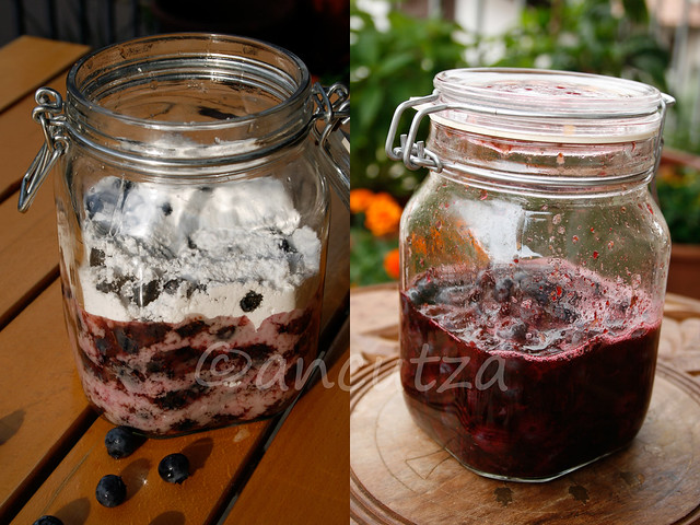 ricetta con foto preparazione liquore ai mirtilli