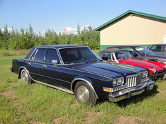 85 Plymouth Gran Fury (Crown Star Images) Tags: cars car inch plymouth mopar ci v8 318 cid cubic displacement wpc walterpchrysler chryslercorporation mbody 318v8 threeeighteen