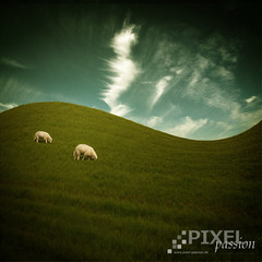 ~ two sheep ~ (~ Pixel Passion ~) Tags: