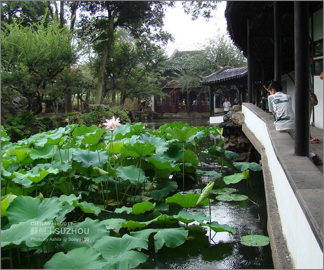 CHINA2011_334
