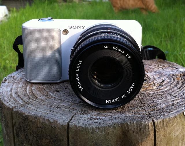 NEX-3 YASHICA ML 50mm F2.0 最短撮影距離で検証