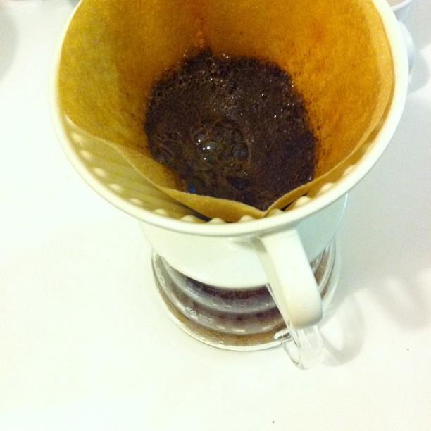 Hier blüht Premium-Kaffee