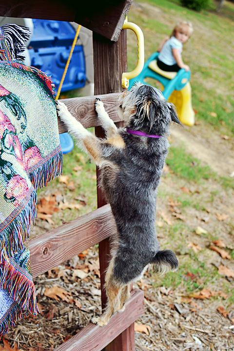 Roxy climbing