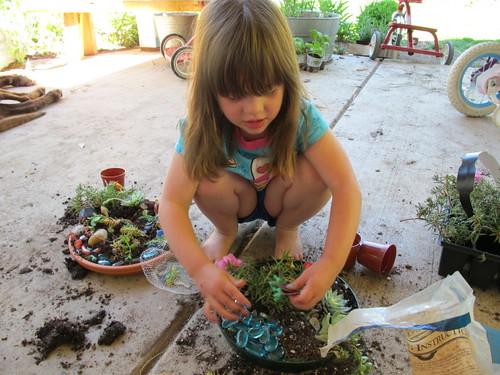 Making Dino Gardens #8